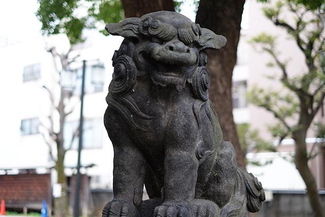 橘樹神社(横浜市保土ヶ谷区)写真