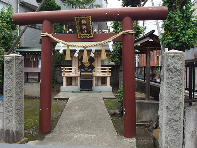 椿神社写真