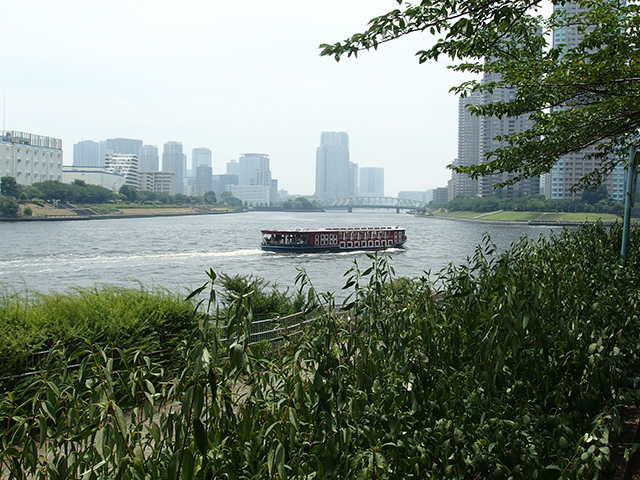 新川公園写真