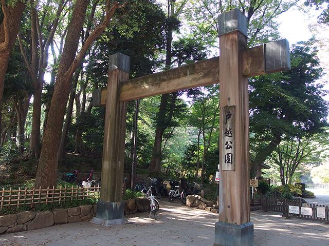 戸越公園写真