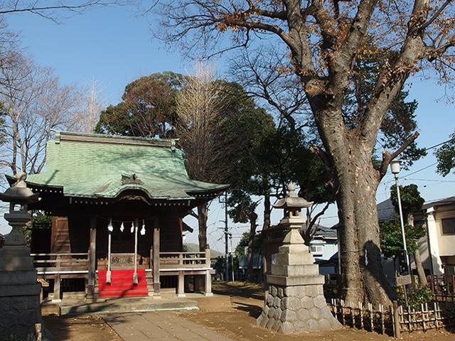 白幡八幡神社(横浜市神奈川区白幡仲町)写真