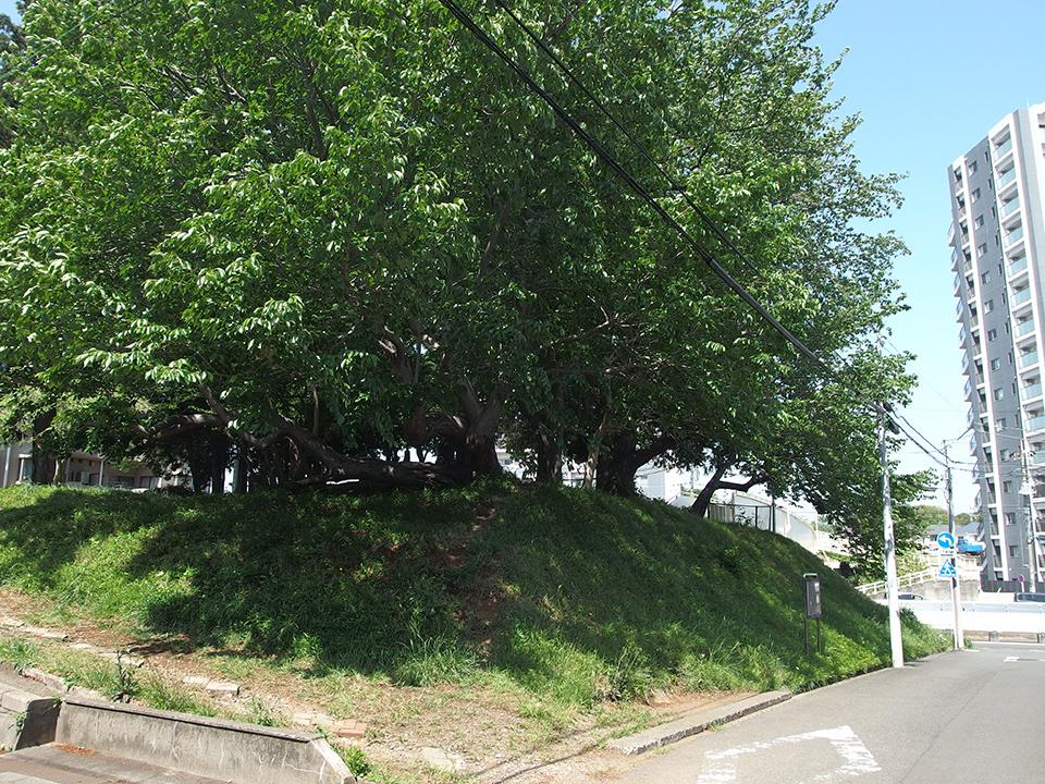 公所浅間神社跡地(富士塚)
