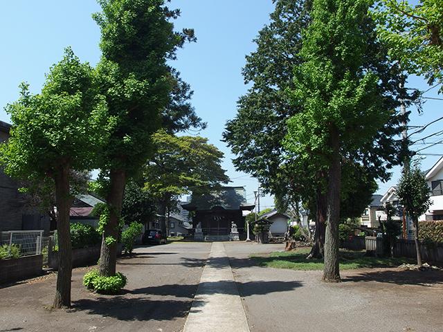 金森杉山神社写真