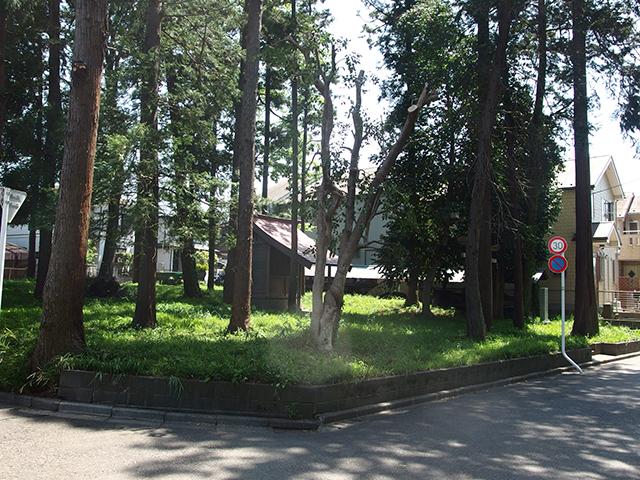 西田金山神社写真