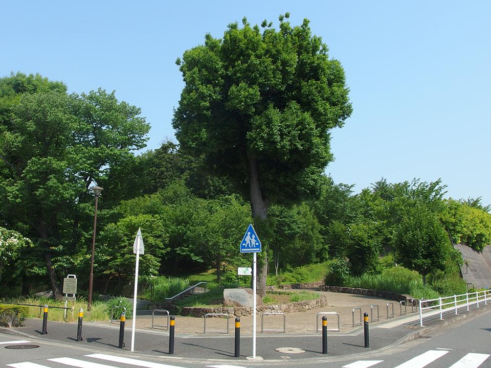 長津田みなみ台公園
