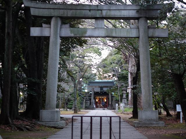 赤坂氷川神社写真