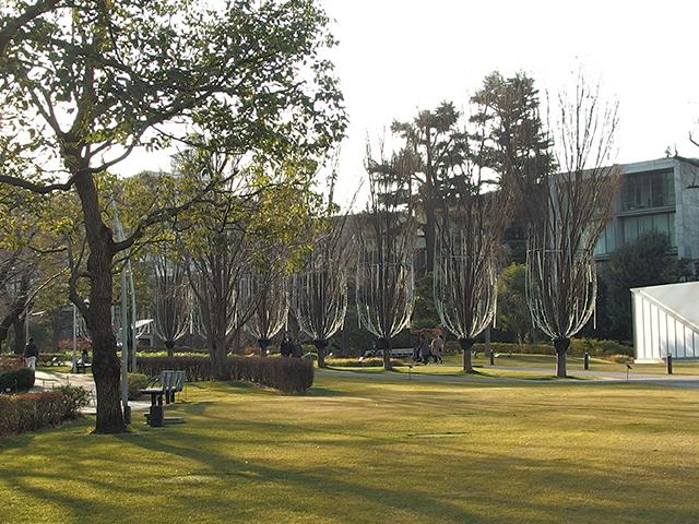 檜町公園写真
