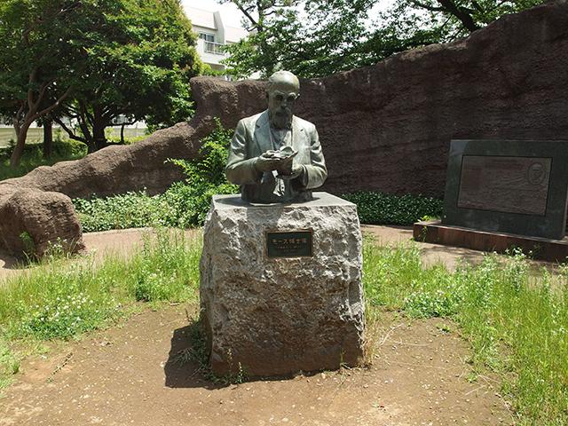 大森貝塚遺跡庭園写真