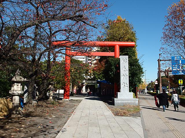 稲毛神社写真