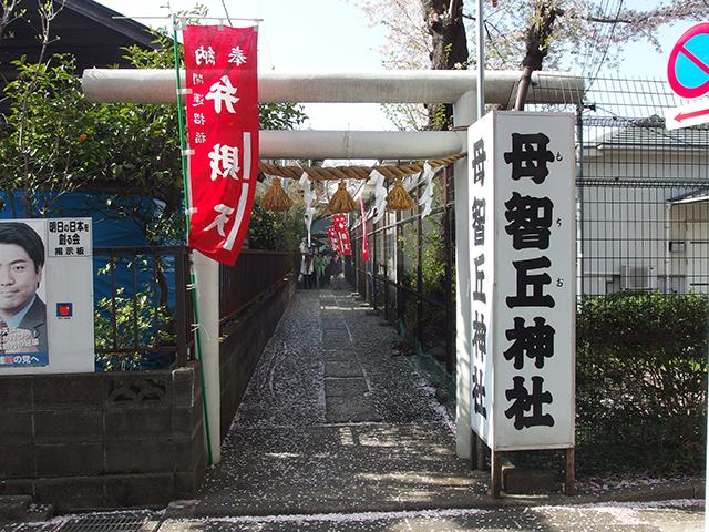 母智丘神社(町田市)写真