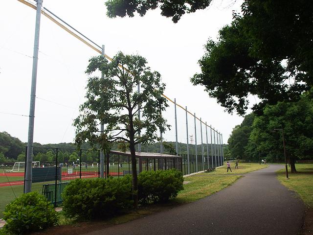 玄海田公園写真
