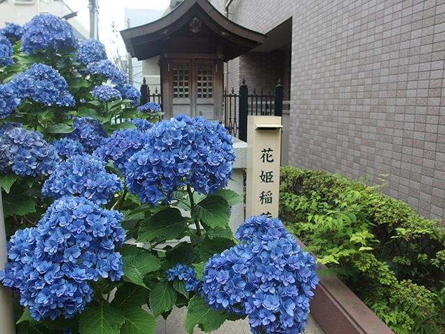 花姫稲荷(文京区湯島)写真