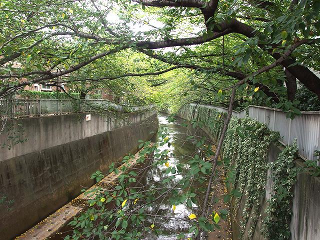 小滝橋写真