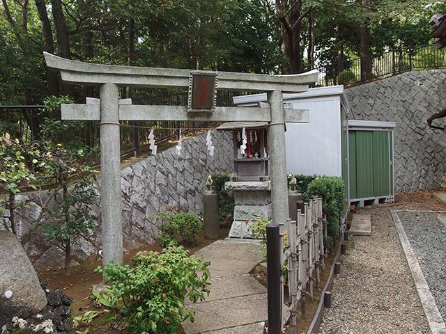 茅ケ崎杉山神社写真