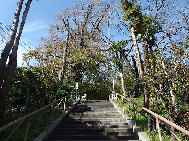 子之神社(横浜市南区堀ノ内町)写真