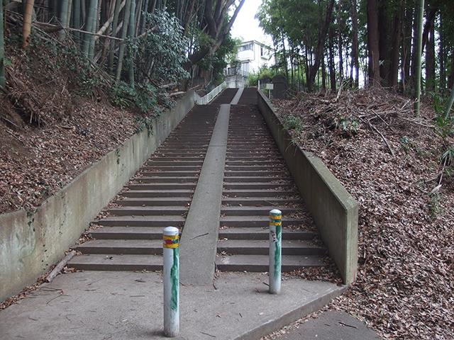 諏訪神社(大和市深見)写真