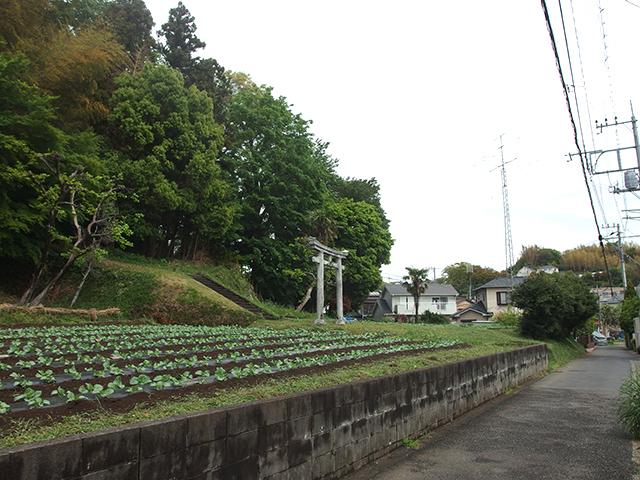 御嶽社(横浜市青葉区元石川町3769)写真