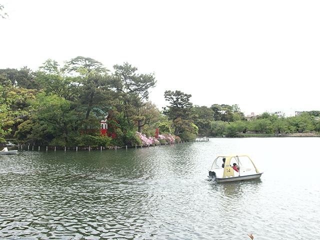 洗足池公園写真
