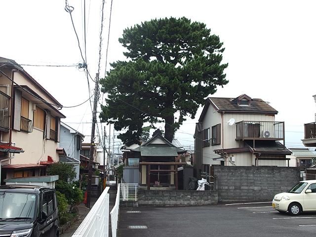 龍宮神社(小田原市東町)写真