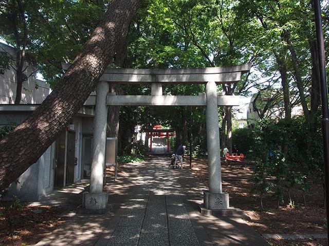 自由が丘熊野神社写真